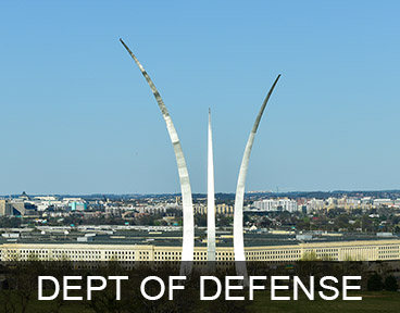 GOVERNMENT: DEPARTMENT OF DEFENSE