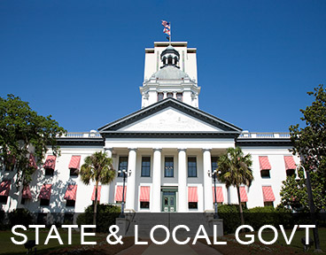 GOVERNMENT: STATE & LOCAL